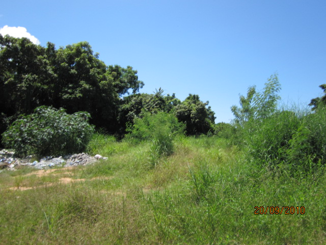 studio land for sale in